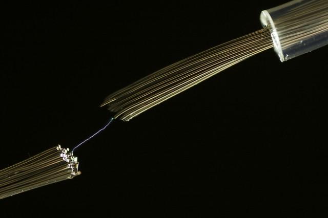 Sårbar strømforsyning. Illustrasjonsfoto: Pawel Prochnicki